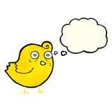 Funny cartoon bird with thought bubble Stock Photos