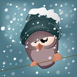 Funny cartoon bird in winter Stock Photo