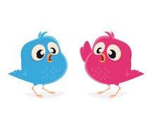 Funny cartoon birds talking Royalty Free Stock Images