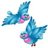 Funny cartoon blue bird isolated on white background. Vector cartoon close-up illustration. Funny cartoon blue bird isolated on white background. Vector cartoon Stock Images