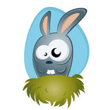 Funny cartoon bunny Stock Images