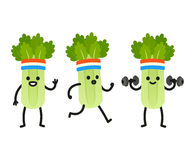 Funny cartoon celery. Funny heath and fitness illustration set. Cartoon celery with sweatband jogging and lifting dumbbells. Cute character drawing Stock Image