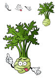 Funny cartoon celery vegetable Stock Photos