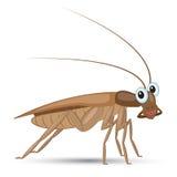 Funny cartoon cockroach royalty free illustration