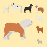 Funny cartoon dog character bread in cartoon style vector illustration. Royalty Free Stock Photography