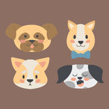 Funny cartoon dog character heads bread cartoon puppy friendly adorable canine vector illustration. Stock Photos