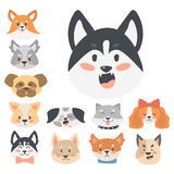 Funny cartoon dog character heads bread cartoon puppy friendly adorable canine vector illustration. Funny cartoon dog character bread heads in cartoon style Stock Photography