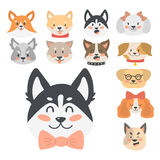Funny cartoon dog character heads bread cartoon puppy friendly adorable canine vector illustration. Stock Photo