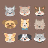 Funny cartoon dog character heads bread cartoon puppy friendly adorable canine vector illustration. Funny cartoon dog character bread heads in cartoon style Stock Images