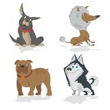 Funny cartoon dogs characters different breads doggy puppy illustration. Royalty Free Stock Photo