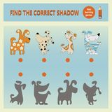Funny cartoon dogs. Find the correct shadow. A learning game for children. Cartoon vector illustration. Children`s educational game collection Royalty Free Stock Photography