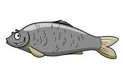 Funny cartoon fish with a happy smile. Side view of a funny grey cartoon fish character with a happy smile and eyebrows isolated on white Royalty Free Stock Images