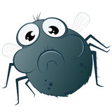 Funny cartoon fly royalty free illustration