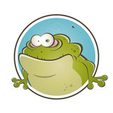 Funny cartoon frog Stock Photos