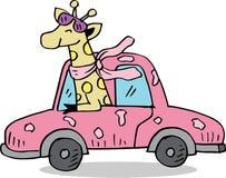 Funny cartoon giraffe on car. royalty free illustration