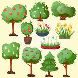 Funny cartoon green garden park tree with fruits set vector nature elements wood graphic illustration Stock Images