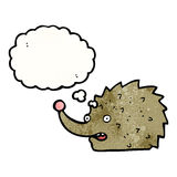 funny cartoon hedgehog with thought bubble Royalty Free Stock Photography