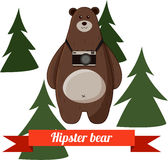 Funny cartoon hipster bear photographer vector Royalty Free Stock Photo