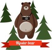 Funny cartoon hipster bear photographer vector Royalty Free Stock Photo