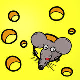 Funny cartoon mouse-guzzler Stock Photography