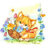 Funny cartoon kitten and flowers. watercolor illustration Royalty Free Stock Images