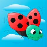 Funny cartoon ladybug  Stock Image