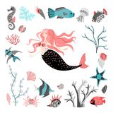 Funny cartoon mermaid surrounded by tropical fish, animal, seaweed and corals.  Sea life. Set of cute isolated vector illustrations on white background Stock Images