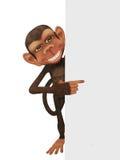 Funny  cartoon  monkey with a blank Stock Photo