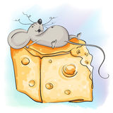 Funny cartoon mouse lies with the cheese Stock Photography