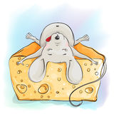 Funny cartoon mouse sleeping on the cheese Royalty Free Stock Photos