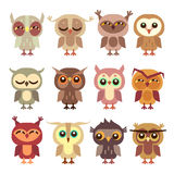 Funny cartoon owls vector set. Wild bird predator, little owlet illustration Stock Image