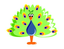 Funny Cartoon Peafowl Royalty Free Stock Images