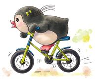 Funny cartoon penguin. Illustration with funny cartoon penguin by bicycle isolated on a white background. Drawing in watercolor and ink vector illustration