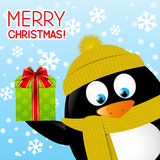 Funny cartoon penguin on winter background Stock Images