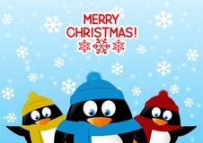 Funny cartoon penguins Stock Image