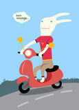 Funny cartoon rabbit riding a scooter. Vector illustration. Royalty Free Stock Images