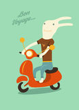 Funny cartoon rabbit riding a scooter. Vector illustration. Royalty Free Stock Image