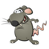 Funny cartoon rat Stock Image