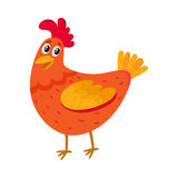 Funny cartoon red chicken, hen standing and smiling happily Stock Photos