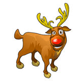 Funny cartoon reindeer with red nose Stock Images