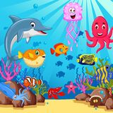 Funny cartoon sea life for you design Royalty Free Stock Photos