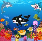 Funny cartoon sea life for you design Royalty Free Stock Photography