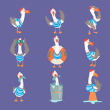Funny Cartoon Seagull Showing Different Actions And Emotions Set, Cute Comic Bird Characters Royalty Free Stock Photography