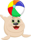 Funny cartoon seal playing a colorful ball Royalty Free Stock Images
