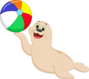 Funny cartoon seal playing a colorful ball Royalty Free Stock Photo