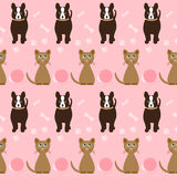 Funny cartoon seamless dog and cat pattern on the bright pink co Stock Photos