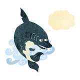 funny cartoon shark with thought bubble Royalty Free Stock Image