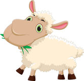 Funny cartoon sheep eating grass. Vector illustration of funny cartoon sheep eating grass  on white Royalty Free Stock Images