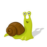 Funny cartoon snail  illustration.  Stock Photography