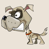 Funny cartoon snarling little dog with a big head Royalty Free Stock Images